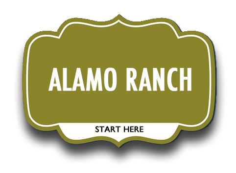 alamo ranch real estate