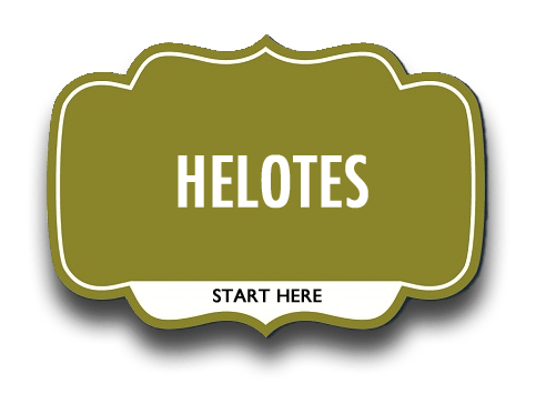 helotes real estate
